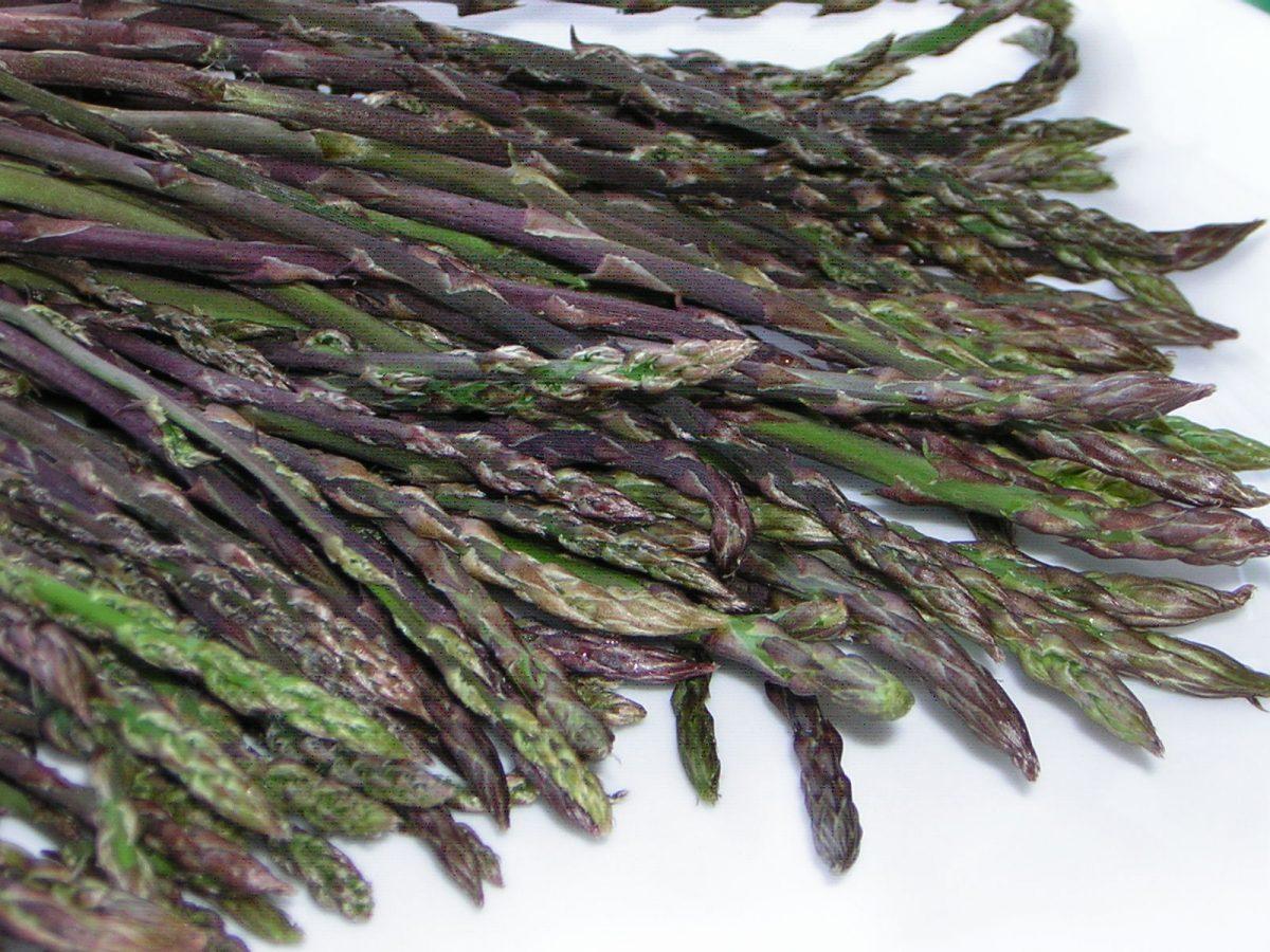 La gioiosa frittata con l'asparagina